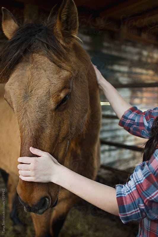 young woman stroking horse by Tana Teel for Stocksy United
