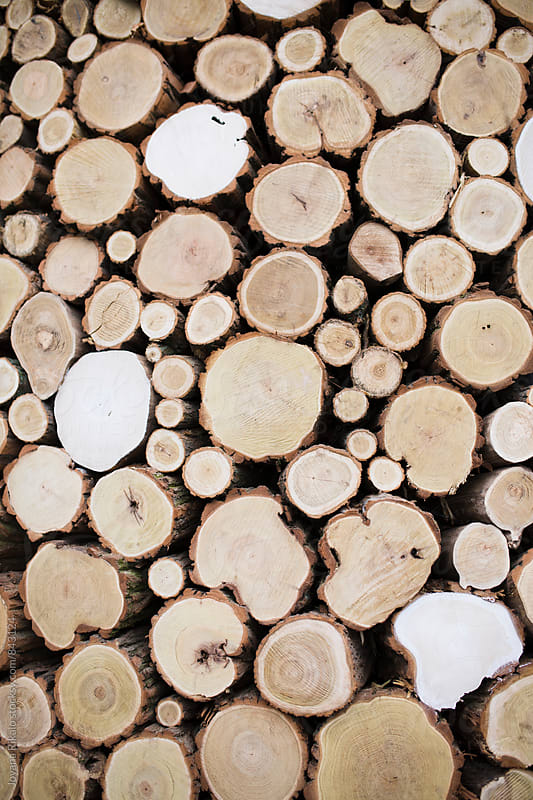 Firewood stack by Jovana Rikalo for Stocksy United