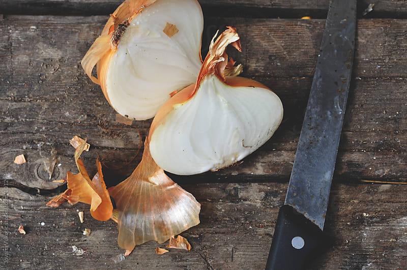 onion by Jovana Vukotic for Stocksy United