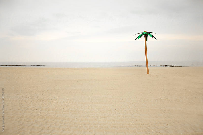 empty beach with plastic palm tree by Sonja Lekovic for Stocksy United