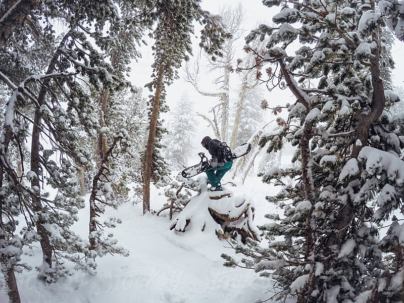 Woman with Snowboard on Fallen Tree by MEGHAN PINSONNEAULT for Stocksy United