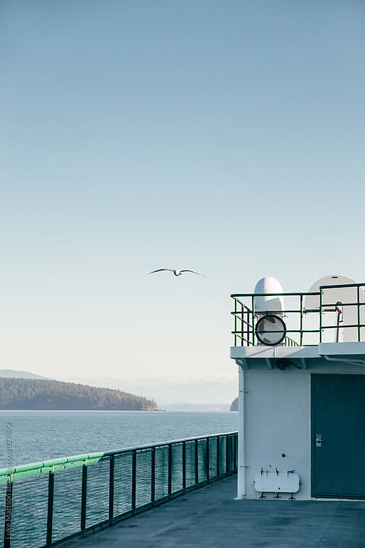 Seagull Flying Alongside Passenger Ferry Boat On Pacific Ocean by Luke Mattson for Stocksy United