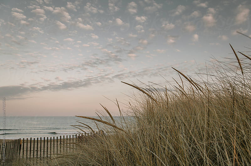 Salisbury Beach Dunes Massachusetts by Raymond Forbes LLC for Stocksy United