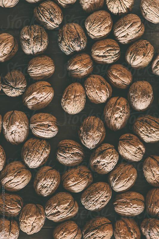 set nut  ready to break by Javier Pardina for Stocksy United