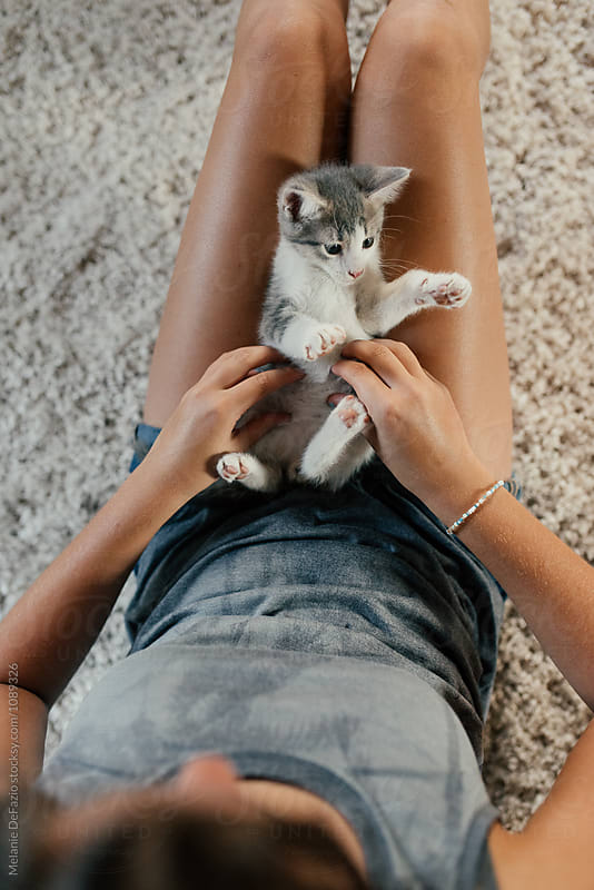 Kittens by Melanie DeFazio for Stocksy United