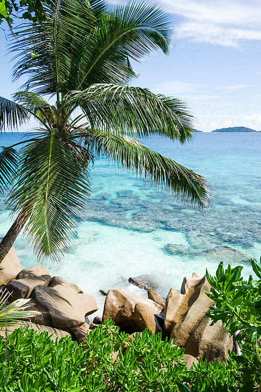 Scenic view of sea in La Digue Island by michela ravasio for Stocksy United