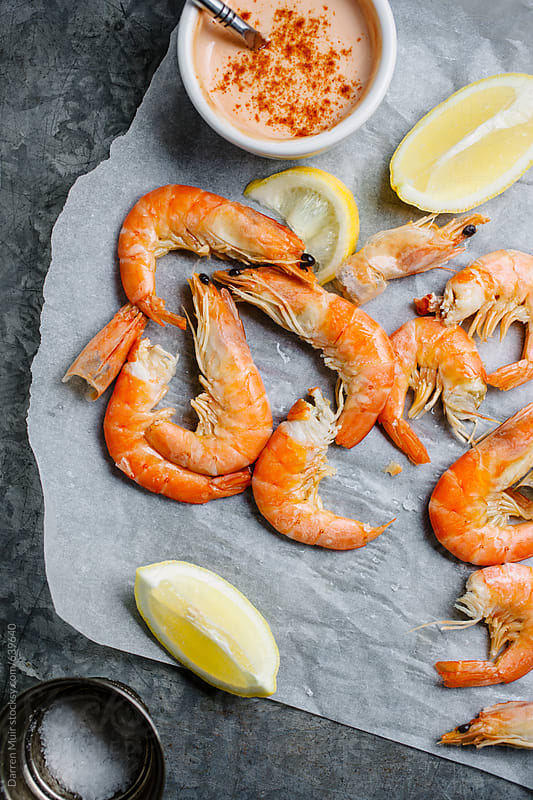 Paper research on shrimp