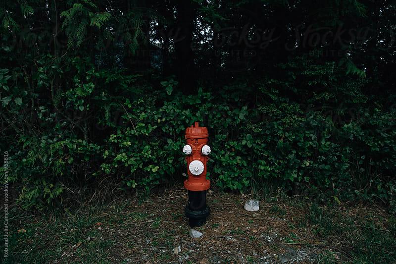 fire hydrant and bushes by Rob and Julia Campbell for Stocksy United