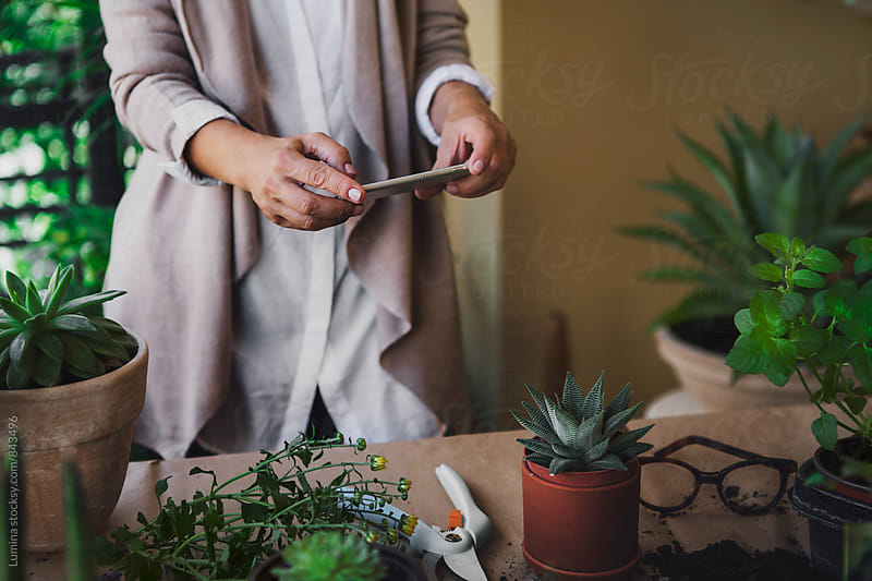 Woman Takes a Photo of a Plant  by Lumina for Stocksy United