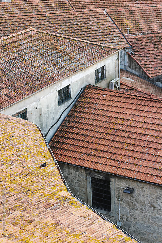 Winery roofs in Porto, Portugal by Luca Pierro for Stocksy United