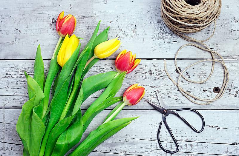 Tulips  by Emoke Szabo for Stocksy United