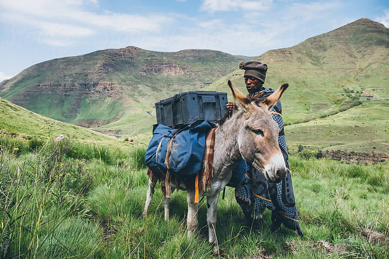 Basotho herdsman packing his donkey for a trek by Micky Wiswedel for Stocksy United
