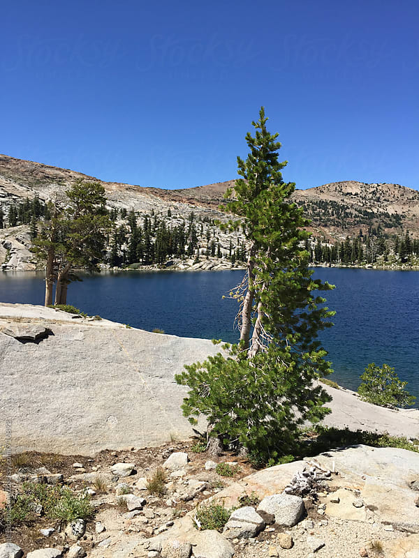 Pristine alpine lake in the High Sierra, Desolation Wilderness, CA, USA by Paul Edmondson for Stocksy United