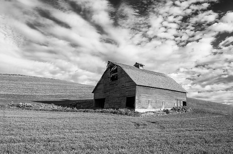 Barn in black and white by Mark Windom for Stocksy United