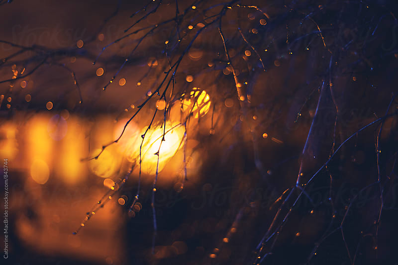 Raindrop bokeh and lights... by Catherine MacBride for Stocksy United