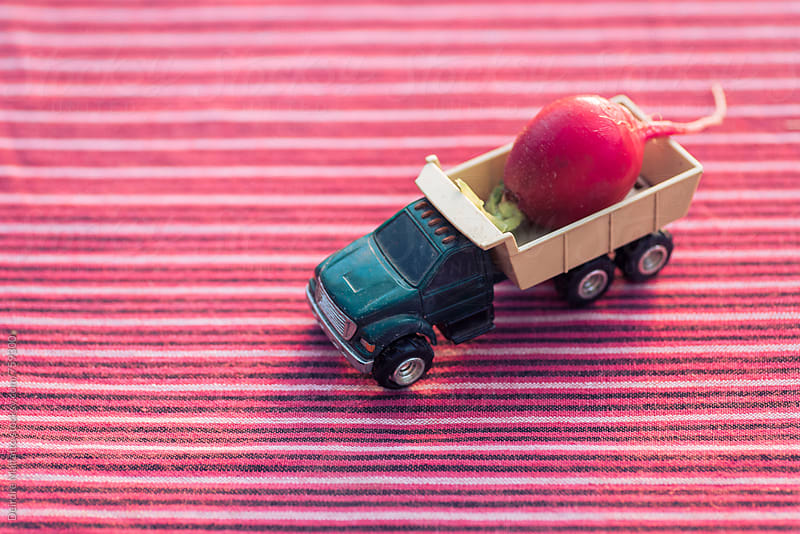 A toy truck hauling a radish by Deirdre Malfatto for Stocksy United