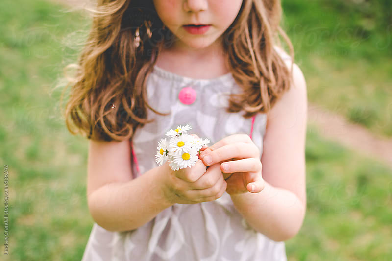 Child holding daisies by Lindsay Crandall for Stocksy United