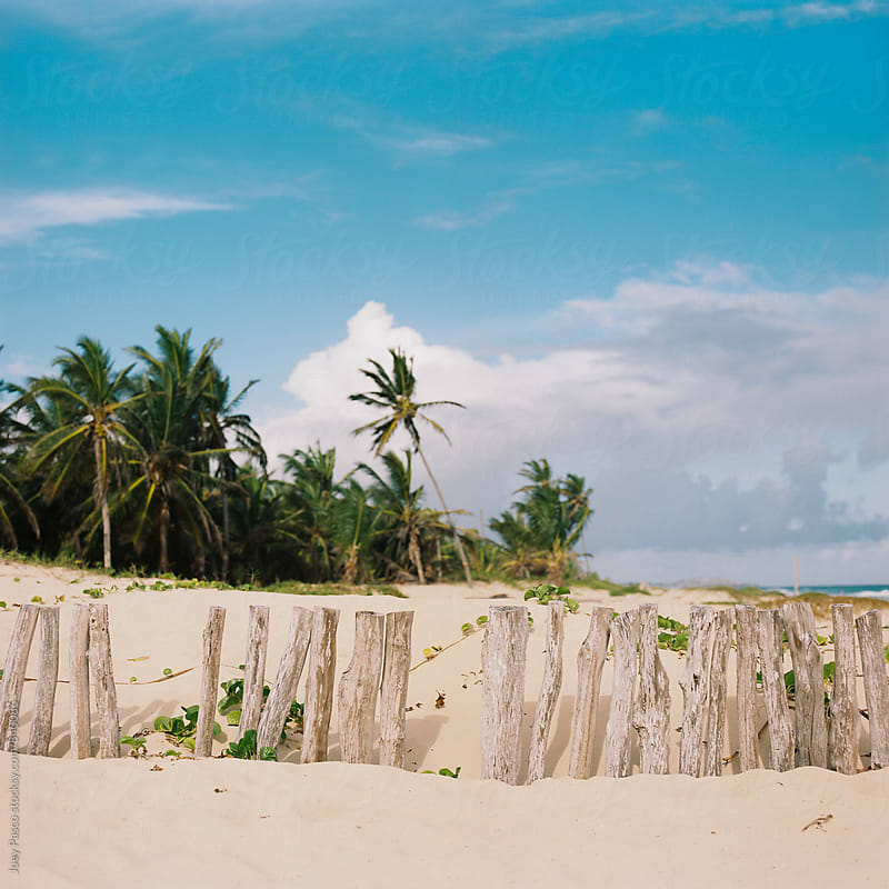 Sloppy wooden fence stands between beach resort and Dominican jungle by Joey Pasco for Stocksy United