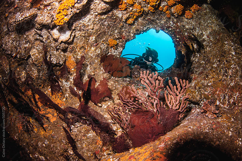 SCUBA diver looks through hole in reef to see inside cave by Caine Delacy for Stocksy United