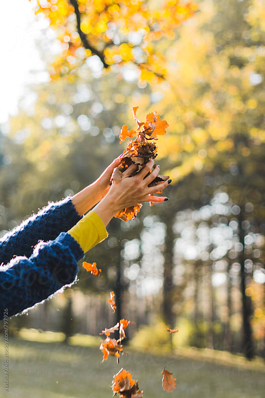 Hands playing with autumn leaves by Natasa Kukic for Stocksy United