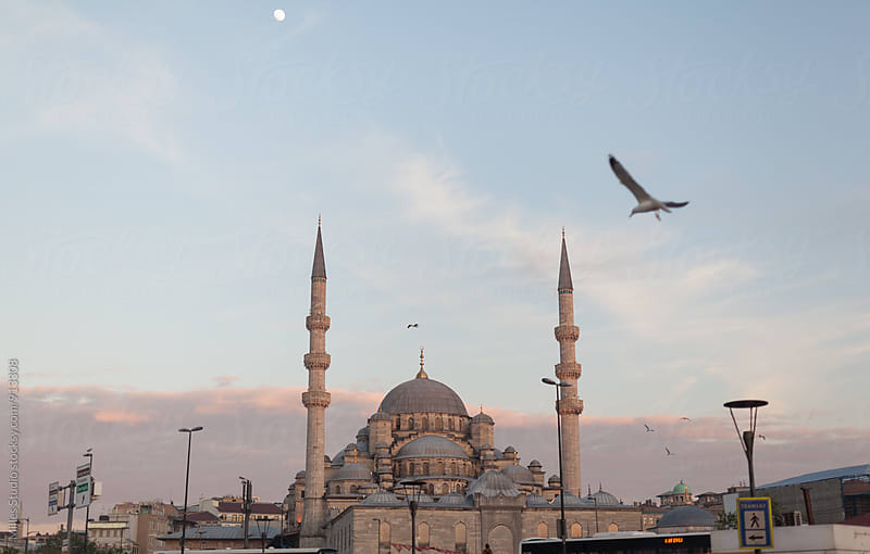 Sultan Ahmed Mosque by Milles Studio for Stocksy United