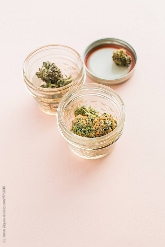 jars of marijuana on pink background by Cameron Zegers for Stocksy United
