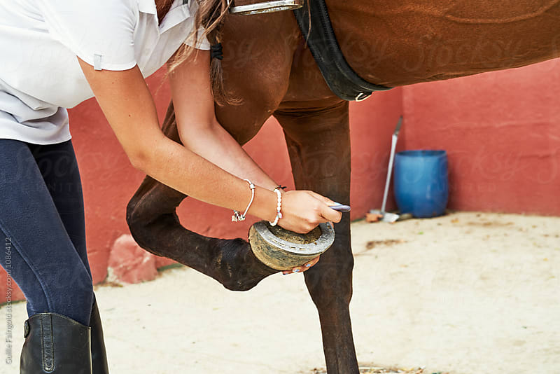 Jockey taking care of horse's horseshoe by Guille Faingold for Stocksy United