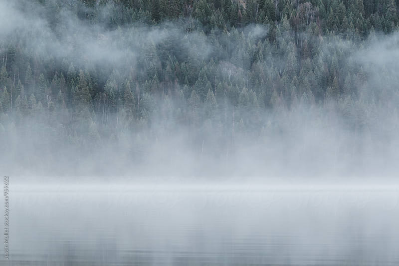 Thick fog over lake on an early morning. by Justin Mullet for Stocksy United