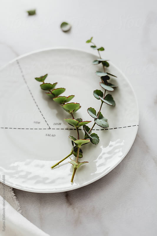 Porcelain plate with eucalyptus by Tatjana Zlatkovic for Stocksy United