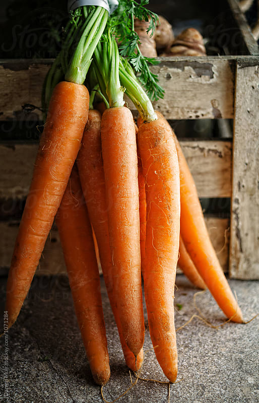 Bunch of carrots. by Darren Muir for Stocksy United