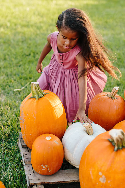A child picking out her pumpkin for Halloween  by Kristen Curette Hines for Stocksy United