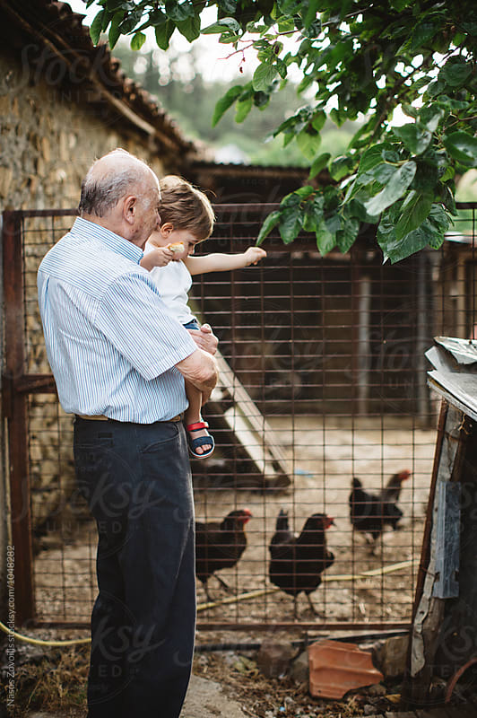 Grandfather feeding chickens with his grandson by Nasos Zovoilis for Stocksy United