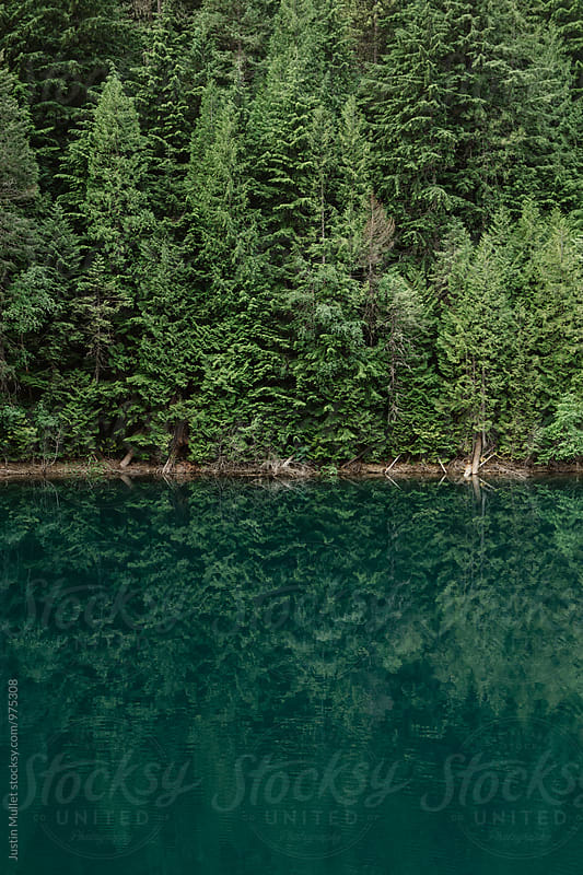 Vibrant blue water on a still glassy lake.  by Justin Mullet for Stocksy United