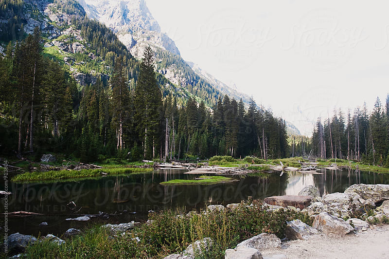 Landscapes at Grand Teton National Park by michelle edmonds for Stocksy United