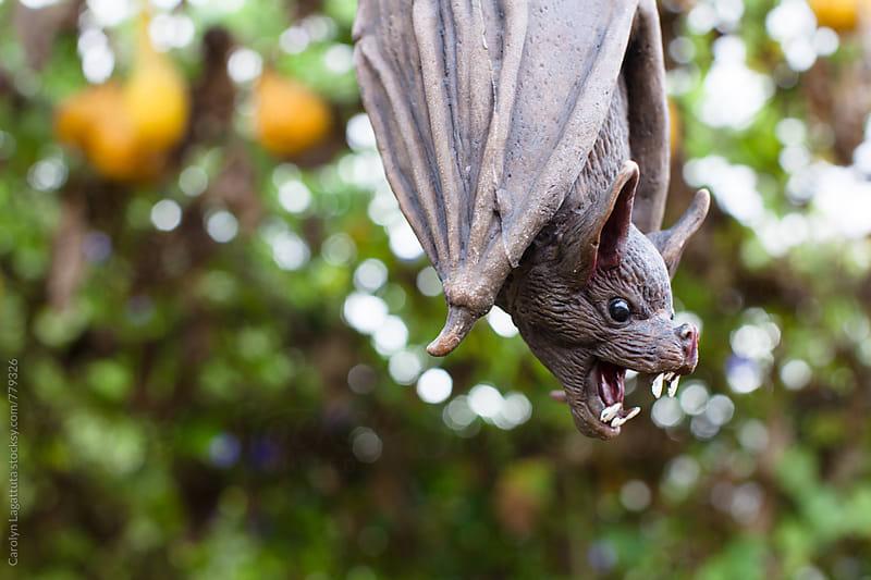 Freaky Halloween bat decoration by Carolyn Lagattuta for Stocksy United