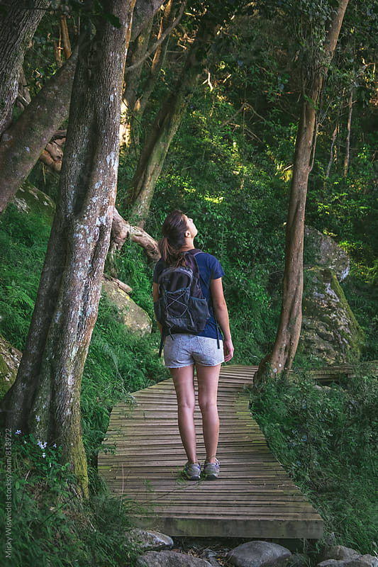 Female hiker on a wooden boardwalk in a forest by Micky Wiswedel for Stocksy United