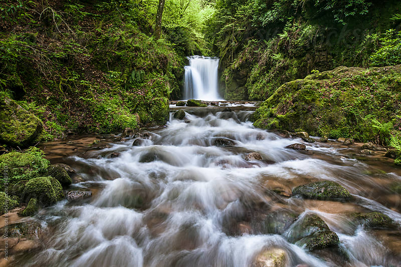 Small Waterfall in the Forest during Spring Time by Andreas Wonisch for Stocksy United