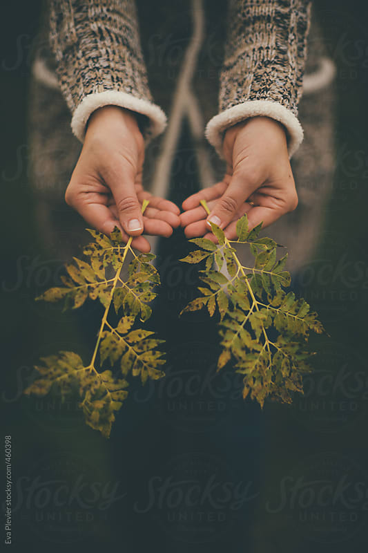 Woman holding two branches with leaves. by Eva Plevier for Stocksy United