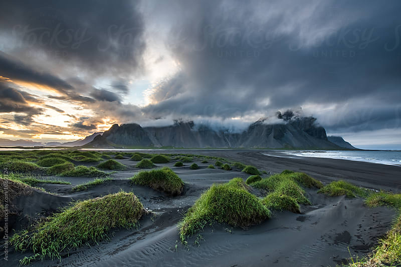 Iceland black sand beach by Andreas Gradin for Stocksy United