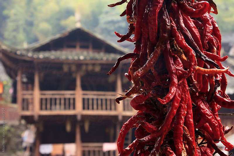Bundle of red chili pepper and traditional Chinese house behind it by Alice Nerr for Stocksy United
