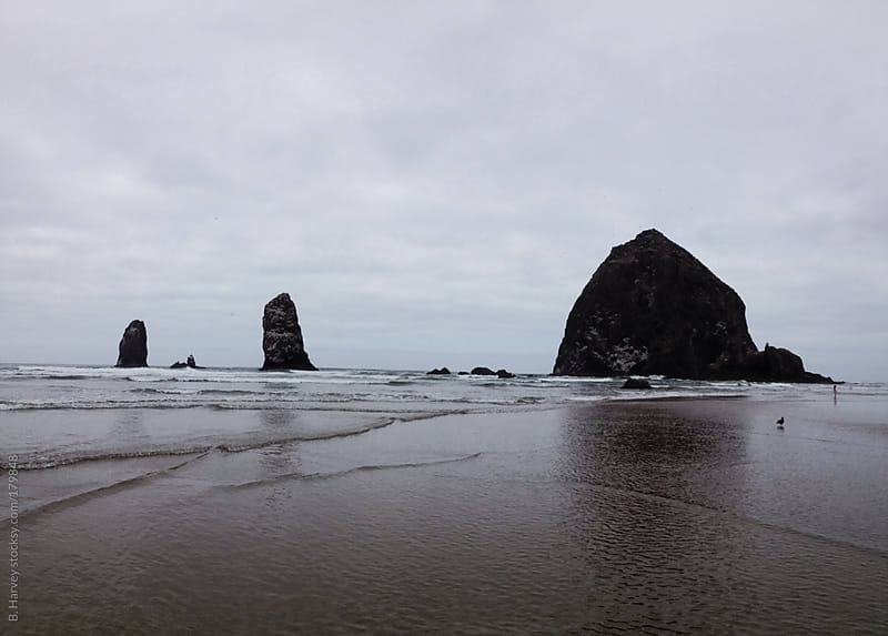 Haystack Rock surrounded by water shot from the beach by B. Harvey for Stocksy United