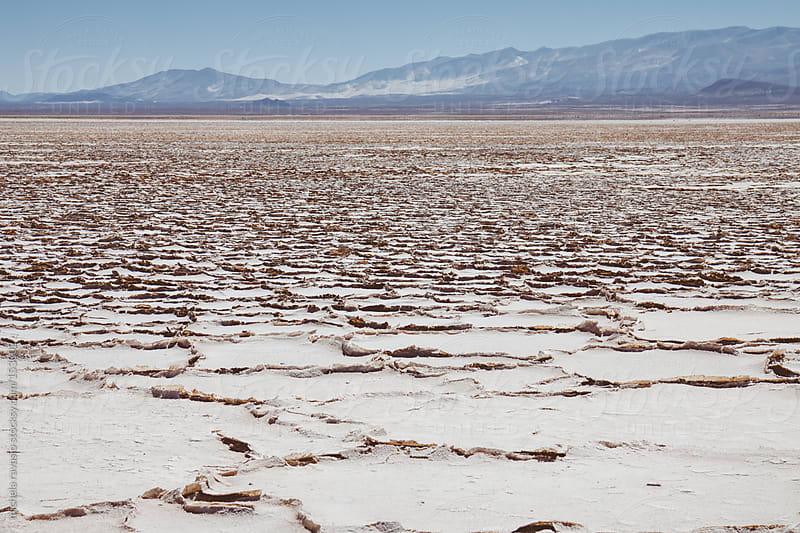 Salt desert by michela ravasio for Stocksy United