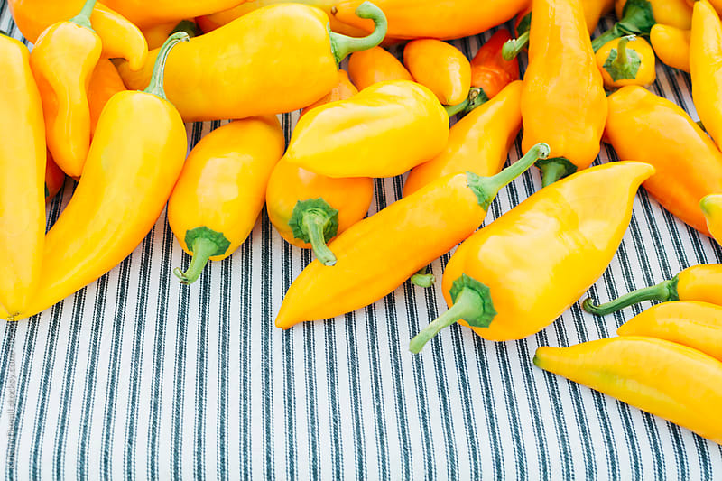 Yellow sweet peppers by Kristin Duvall for Stocksy United