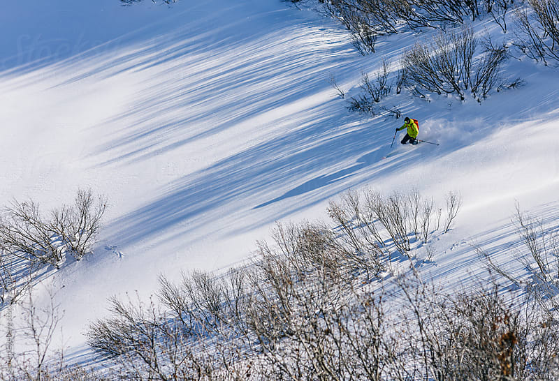 Skier in yellow jacket telemark skiing through open snow covered glades on the mountain by Soren Egeberg for Stocksy United