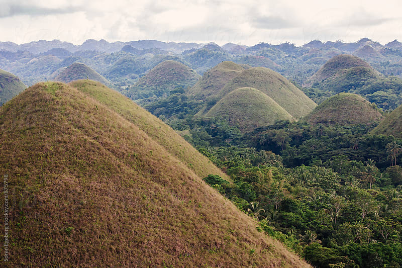Chocolate Hills landscape on the island of Bohol in the Philippines by Søren Egeberg Photography for Stocksy United