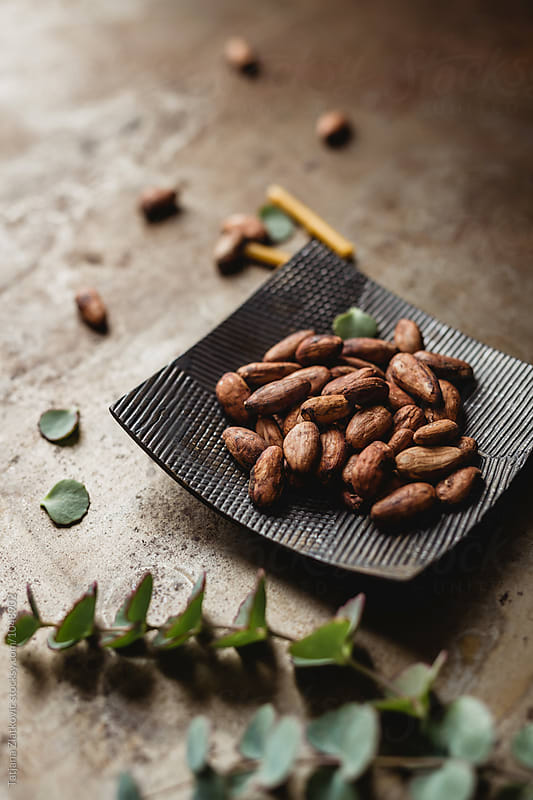Cacao beans by Tatjana Ristanic for Stocksy United