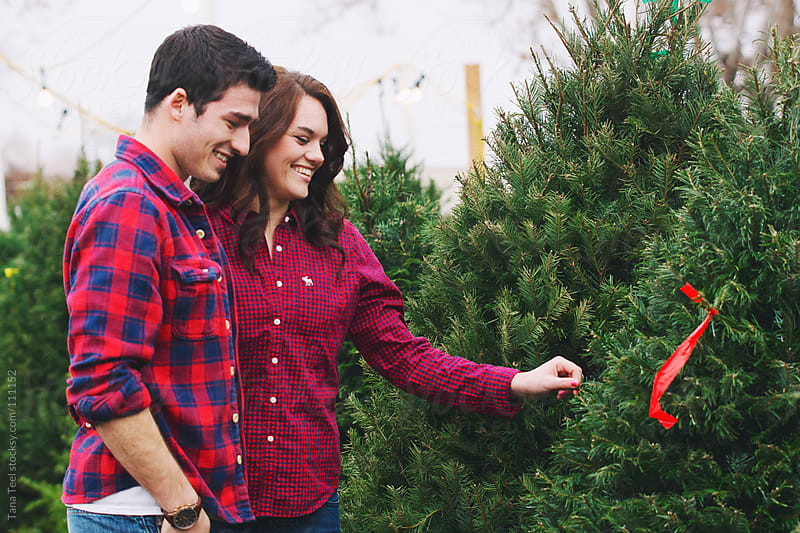 A couple search for a Christmas tree together in a tree lot during the holiday by Tana Teel for Stocksy United