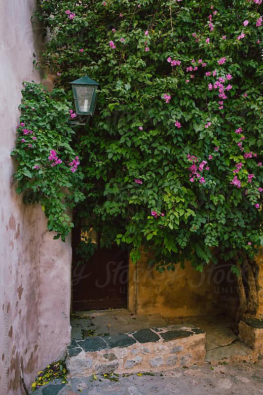Quiet Street Scene at Monemvasia, Greece. by Alberto Bogo for Stocksy United