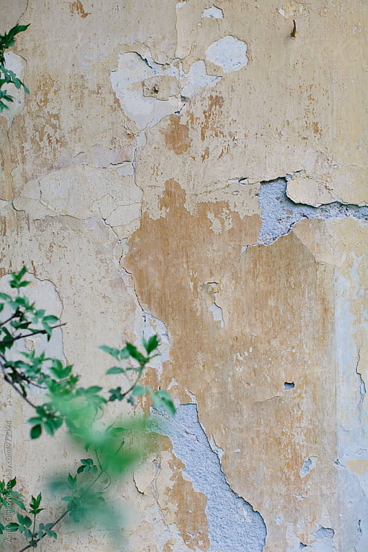 Grungy wall background texture with peeling paint by Amir Kaljikovic for Stocksy United
