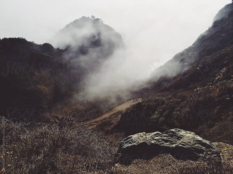 Foggy Cliffs near Big Sur, CA by Christian Gideon for Stocksy United